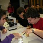 Εργαστηριακές ασκήσεις Βιολογίας: Προτάσεις από τα ΕΚΦΕ