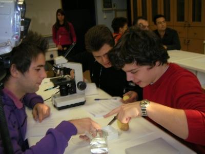 Συμμετοχή του 1ου ΓΕΛ Νάουσας στον τοπικό Διαγωνισμό EUSO 2010