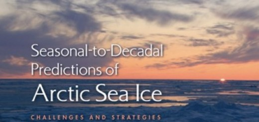 Seasonal-to-Decadal Predictions of Arctic Sea Ice: Challenges and Strategies