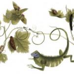 Το Doodle της Google αφιερωμένο στη Μαρία Σιμπίλα Μέριαν, γυναίκα φυσιοδίφη