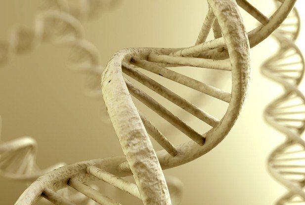 Η Γενετική Ιστορία (DNA) των Ελλήνων