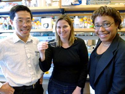 Από αριστερά οι καθηγητές Yet-Ming Chiang, Angela Belcher και Paula Hammond δείχνουν ένα φιλ με ιό που θα μπορούσε να χρησιμοποιηθεί ως η άνοδος μία μπαταρίας.