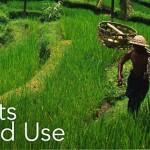 Πώς τα δάση, οι αγροί και οι οικισμοί αλληλεπιδρούν με το κλίμα;
