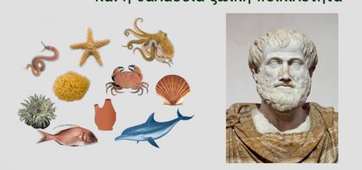 voultsiadou-aristotelis