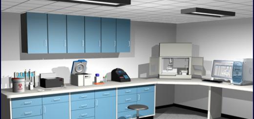 virtual-lab-bacterial