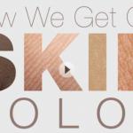 Το χρώμα του δέρματός μας