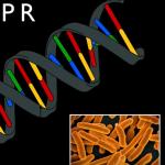 Βίντεο – Τι είναι η τεχνολογία  CRISPR/Cas9;