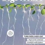 Η 24η έκδοση του Big Picture: Τα φυτά| Μάιος 2016