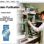 Καθαρίστε την πρωτεΐνη σας… εικονικά