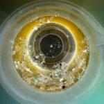 Μικροπλαστικά και Πλαγκτόν στους Ωκεανούς