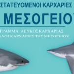 Οι καρχαρίες της Μεσογείου